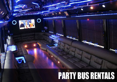 Wedding Party Bus Rentals